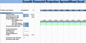 crossfit financial projection spreadsheet excel